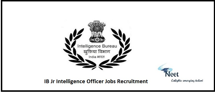 IB Jobs Recruitment